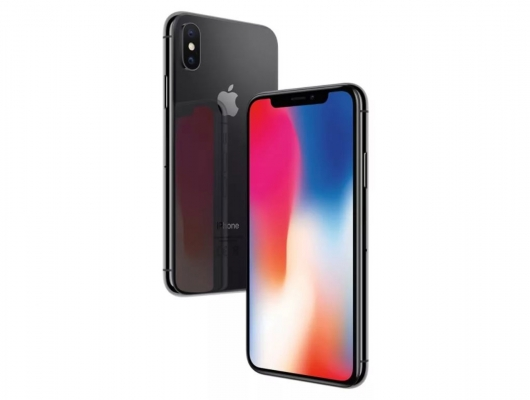 Apple iPhone X 256Gb Space Gray 21979838-P3